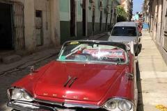 Dodge rossa