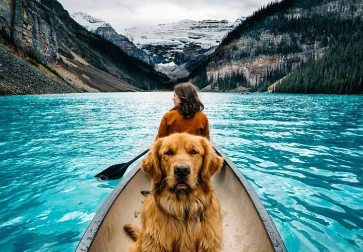 Aspen @ Lake Louise